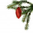 Red ball on fir branch — Stock Photo #2758411