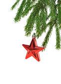 Christmas red star — Stock Photo