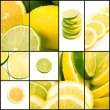 Lemon and lime collage - Stock Photo
