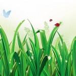 grönt gräs — Stockvektor