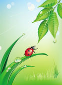 Uğur böceği ile doğal arka plan — Stok Vektör