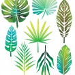 Stock Vector: green leaves