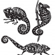 Vector de stock : Black and white chameleon