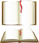 Opened books with blank pages — Stock Vector