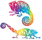Colored chameleon — Stock Vector