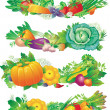 Banners with vegetables — Stock Vector
