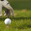 Human hand positioning golf ball on tee, close-up — ストック写真