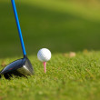 Stock Photo: Golf club on golf course