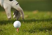 Menselijke hand golfbal positionering op de tee, close-up — Stockfoto