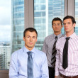 Three businessmen at office, portrait — Stock Photo