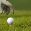 图库照片: Humhand positioning golf ball on tee, close-up