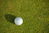 Elevated view of golf ball on grass — Stock Photo