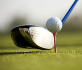 A golf club on a golf course — Stock Photo