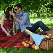 Young couple sitting on picnic blanket while boyfriend feeding — Stock Photo