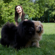 Stock Photo: Young woman with dogs in park