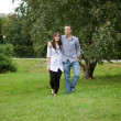 Young couple walking in park — Stock Photo #3844091