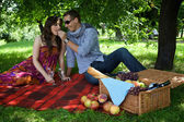 Young couple sitting on picnic blanket while boyfriend feeding — Stok fotoğraf