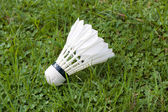 Badminton — Stock Photo