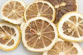 Lemon Dry — Stock Photo