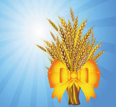 Wheat bunch — Stock Vector