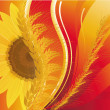 Background with wheat and a sunflower — Stock Photo
