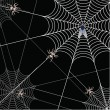 Stock Photo: Spider and web on black background