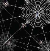 Una web sobre un fondo negro y araña — Foto de Stock