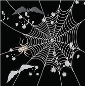 Spider, bat and a web on a black background — Stock Photo