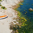 Foto Stock: Litlle boat on beach