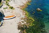 Litlle boat on the beach — Stock Photo
