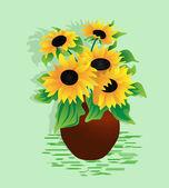 Sunflower — Stock Vector