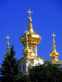 Cúpulas de ouro. — Foto Stock