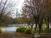 In autumn park at the river. — Foto Stock