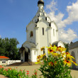 Orthodox temple. — Stock Photo #3508440