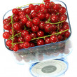 Kitchen scales and currants. — Stock Photo