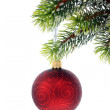 Royalty-Free Stock Photo: Christmas decoration.