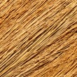 Broom texture. - Stock Photo