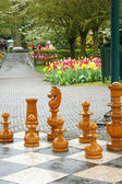 Outdoor Chess Pieces. — Stock Photo