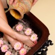 Pampered feet pedispa - Stock Photo