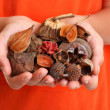 Handful of fragrant bush potpourri - Stock Photo
