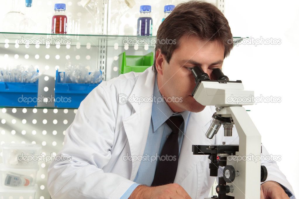 A researcher observes a substance on a slide under a stereo microscope — Stock Photo #2898944