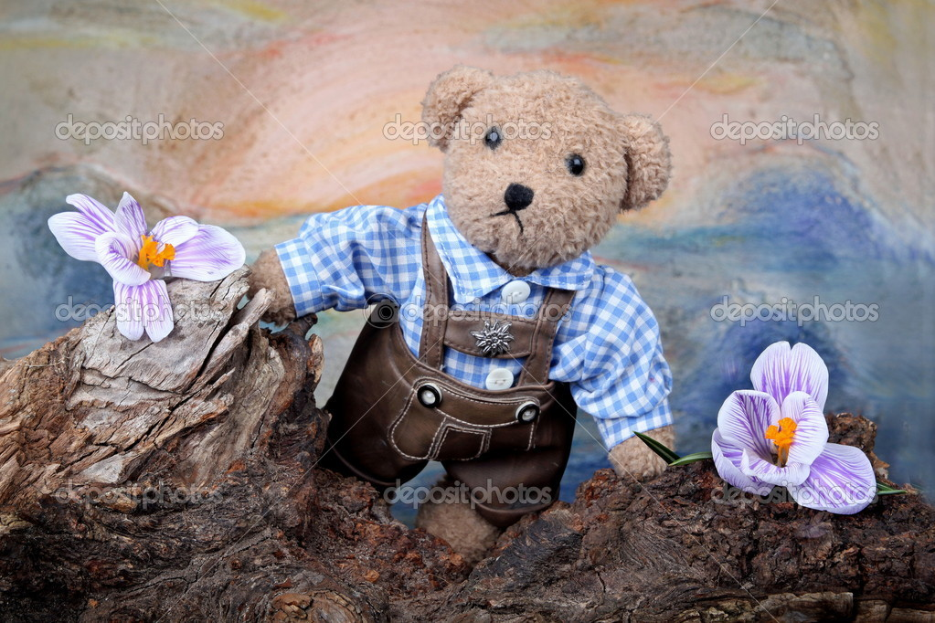 Teddy in nature — Stock Photo #2759651