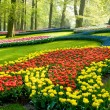 Stock Photo: A view in the park keukenhof