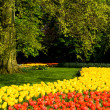 Stock Photo: Part of park keukenhof