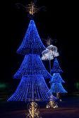 Blue christmas trees — Stock Photo