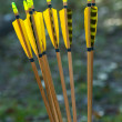 Yellow arrows - Stockfoto