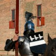 A knight on a horse - Stok fotoğraf