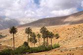 Berg oasis — Stockfoto