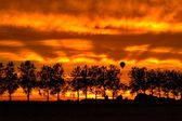 Silhouette trees and hotair balloon — Stock Photo