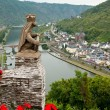 A view on the mosel — Stock Photo